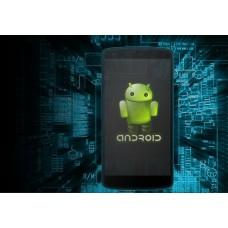 Software de Seguridad Parental Android